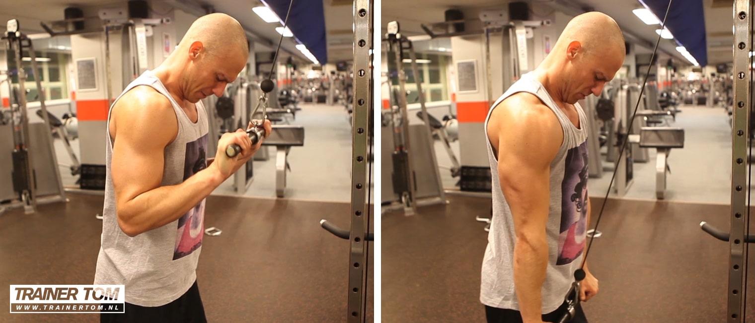 Triceps pushdown met stang